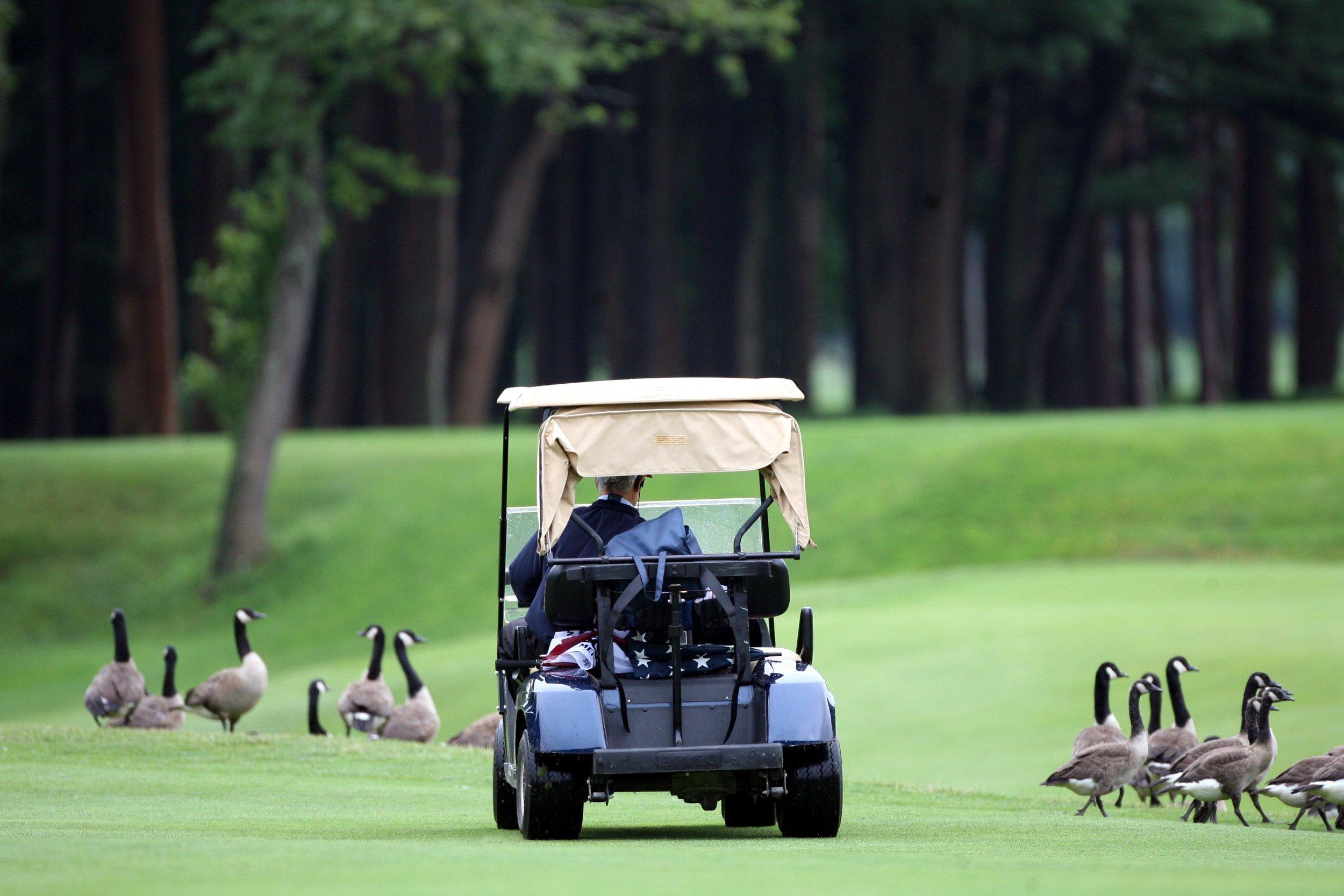 golfcart0.jpg