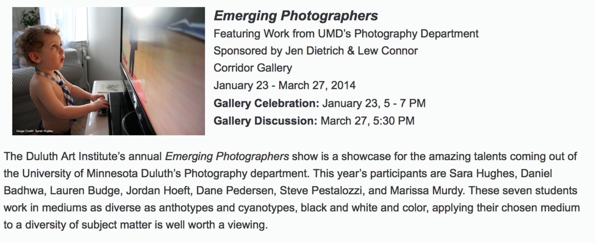 Duluth Art Institute website 1/16/14