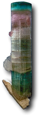 The wide variety of colors possible in tourmaline is illustrated by this stunning crystal from California's Himalaya Mine.
