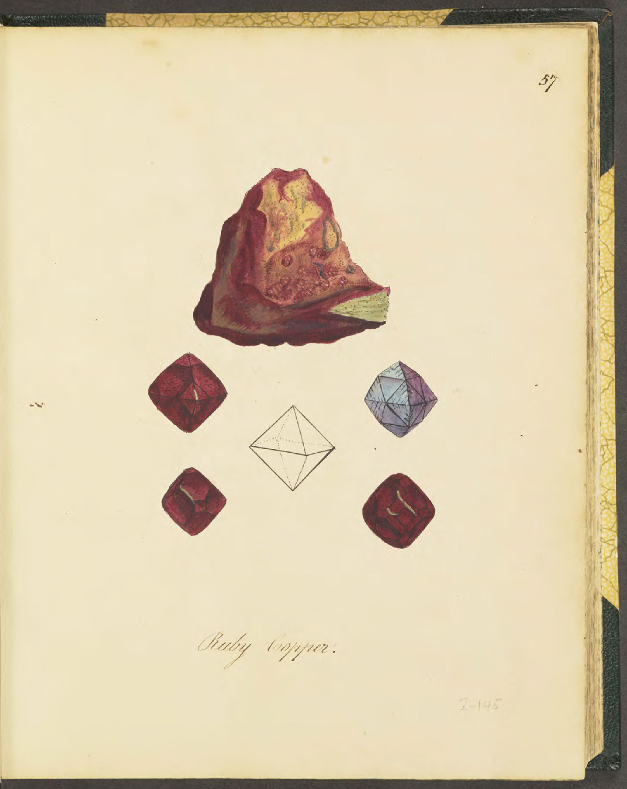 Red Oxide of Copper.  From Martha Proby's   British Mineralogy   (1840). In her text she gives the locality of this specimen as Cornwall.