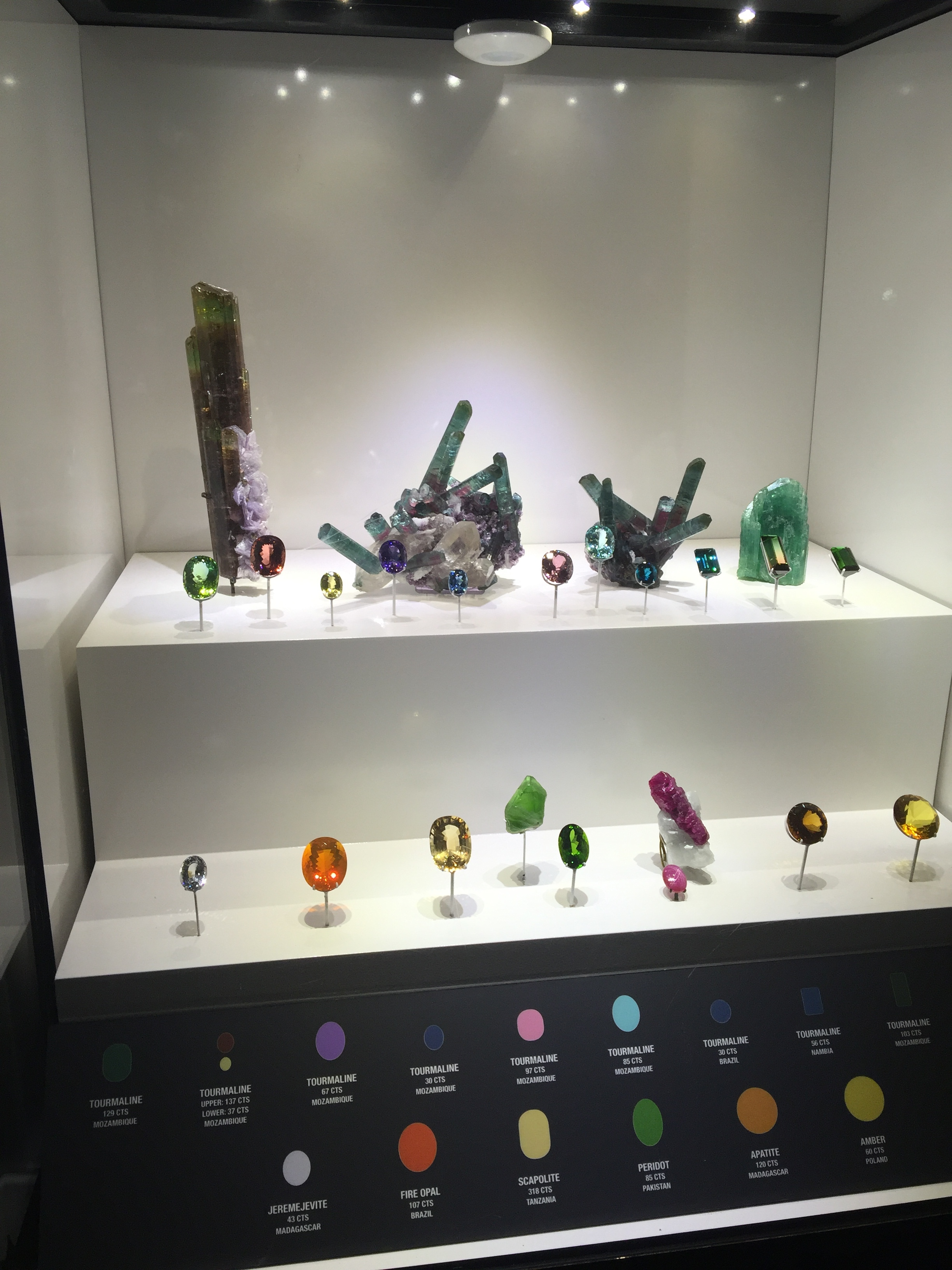 During last month's Houston Fine Mineral Show, Pala International's Will Larson visited the Perot Museum of Nature and Science. We'll feature all of Will's images from the Lyda Hill Gems and Minerals Hall in our June edition of   Pala Mineralis  , our sibling e-newsletter for mineral specimen enthusiasts.