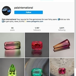 PALA ON INSTAGRAM!  Follow the feed    READ MORE »
