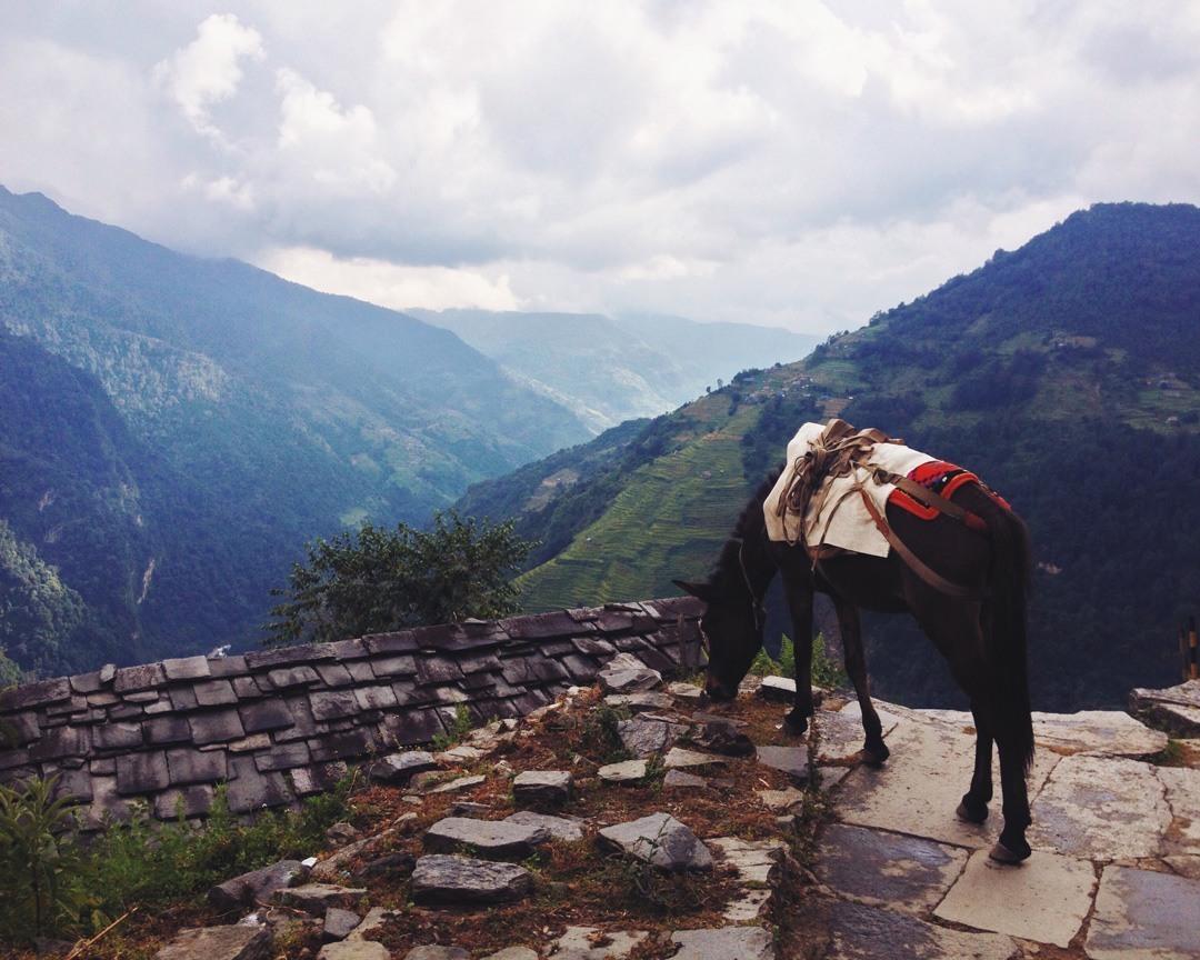 Day 78: Chhomrang, Nepal