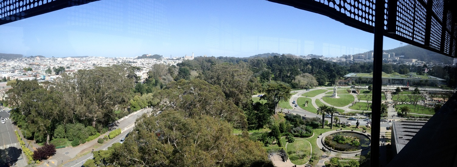 View of Golden Gate Park from the DeYoung Museum in March