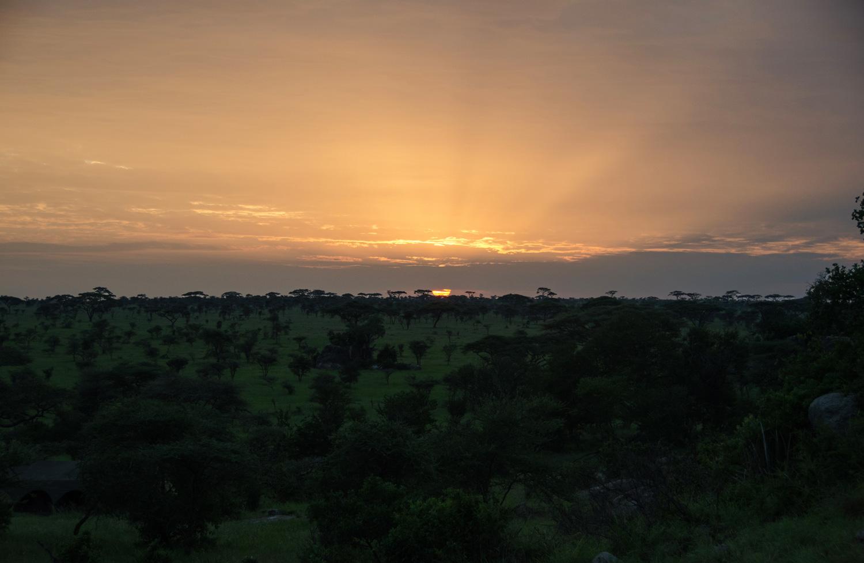 Sunset over the Acacia (© Kaitlyn Ellison)