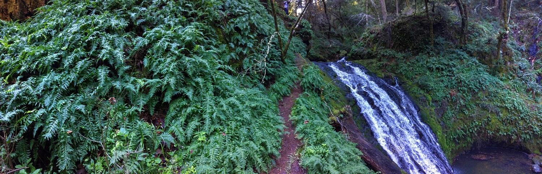 Cascade Falls, California in February