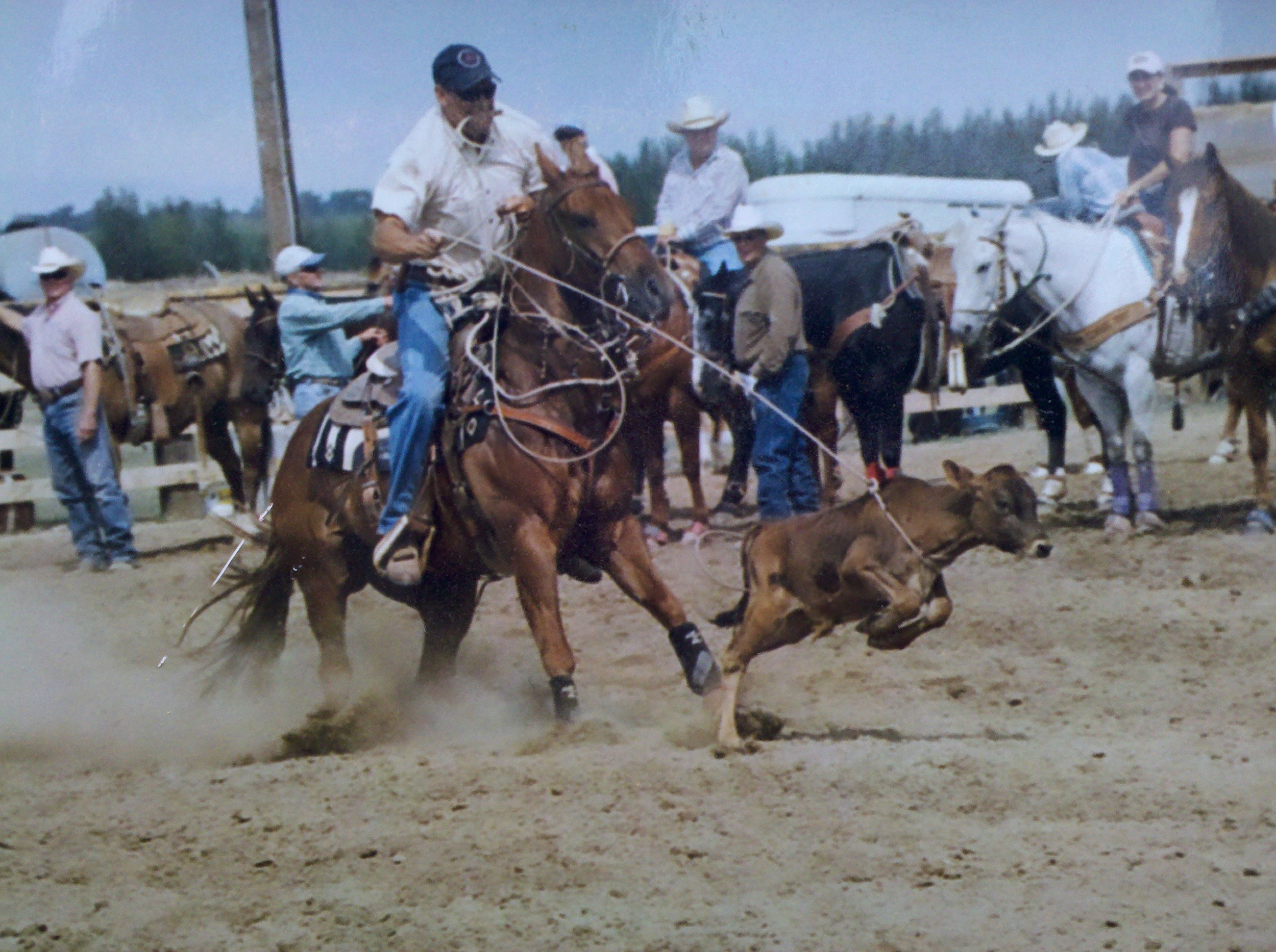 I loved to calf rope and competed at a novice level. I won money but it was mostly for fun and even winning would barely cover fuel to go! But I had a lot of fun with my friends and had a couple of neat horses.
