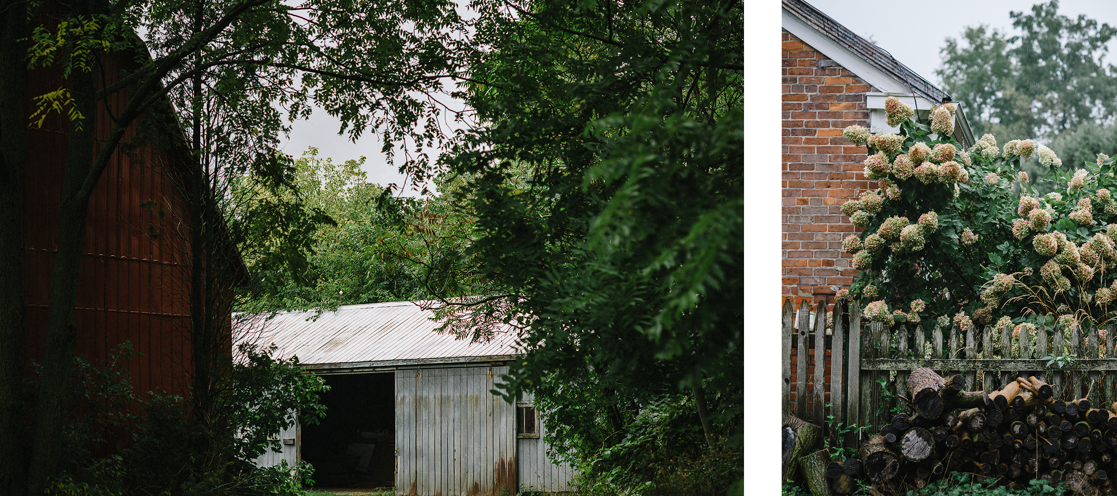 spread-3-Best-Moody-Vintage-Small-Town-Chapel-Wedding-Toronto-Ontario_-Guest-House-Plant-Detail.png