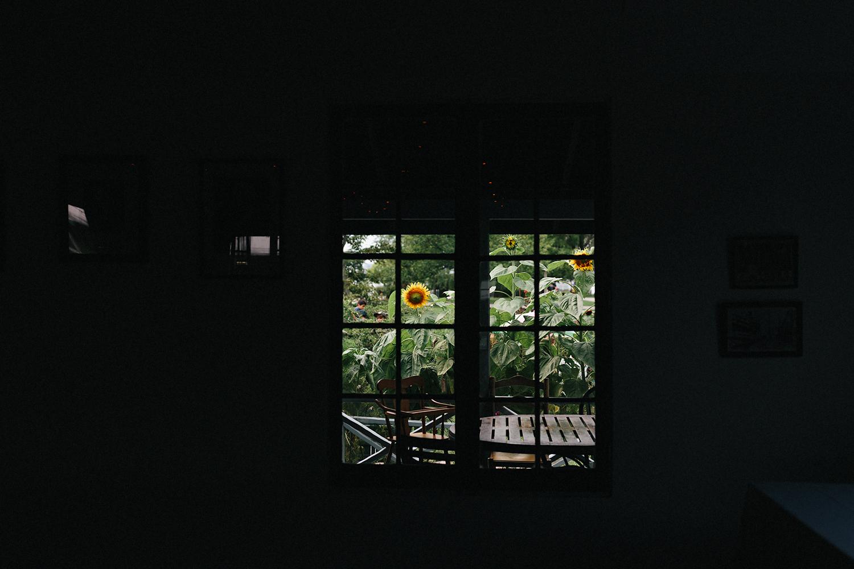 Toronto-Island-Wedding-Toronto-Best-Film-Wedding-Photographers-3b-photography-analog-photography-wards-island-clubhouse-details-old-photographs-vintage-rustic-sunflowers.jpg