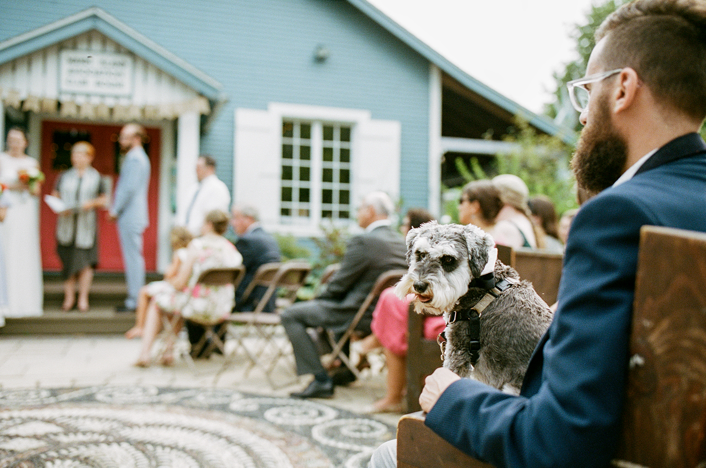 Best-Analog-Film-Wedding-Photography-Toronto-3B-Photography-Brjann-BAtista-Bettencourt-Editorial-Candid-Documentary-Wedding-photographers-Canada-Vintage-Moody-Candid-Portrait-of-Couples-Dog.jpg