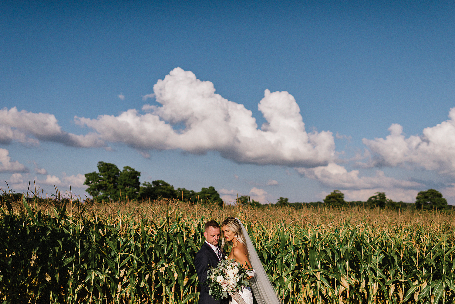dowswell-barn-wedding-beaverton-best-wedding-photographers-toronto-moody-style-candid-photojounalistic-approach-intimate-vintage-farm-wedding-Farm-wedding-bridal-party-groomsmen-candid-drinks-cinematic-portrait-of-bride-and-groom-cornfield.jpg