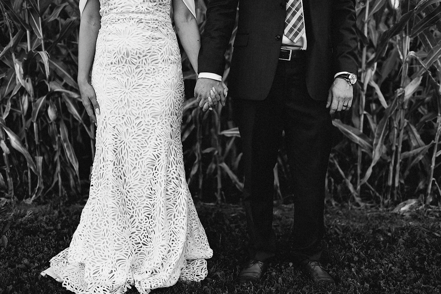 Best-Wedding-Photographers-Toronto-with-Documentary-and-photojournalistic-style-3b-Photography-Intimate-Wedding-at-Dowswell-Barn-Wedding-Photography-Bride-and-groom-intimate-wedding-couple-cornfield-details.jpg