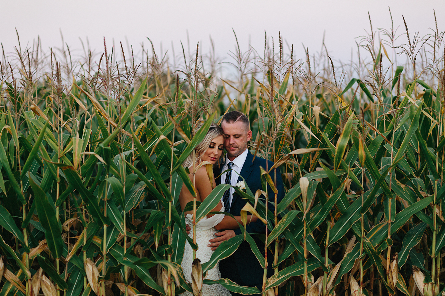 Documentary-Wedding-Photographers-in-Toronto-Candid-Natural-Dowswell-Barn-Wedding-Rustic-GTA-Muskoka-Farm-romantic-barn-golden-hour-sunset-portraits-of-groom-and-bride-intimate-romantic-cornfield.jpg