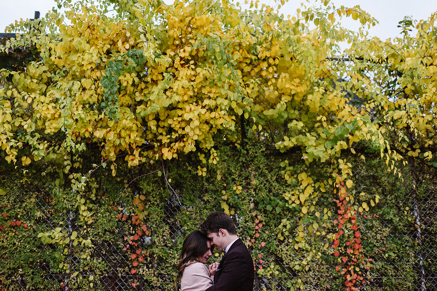 41-Best-Elopement-Photographers-Toronto-Fall-Wedding-Elopement-Modern-Vintage-Hipster-Beautiful-Groom-Red-Fall-Neon-Tree.JPG