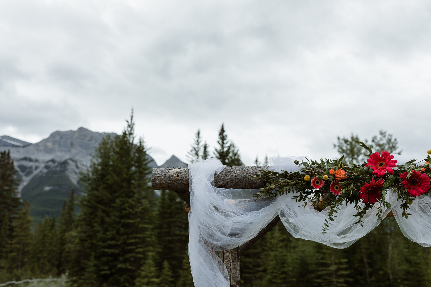 49-Canmore-Alberta-Real-Wedding-Best-Wedding-Photographers-63.JPG