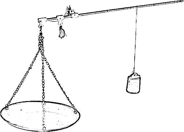 scale by cha-shifu your pu-erh expert tea