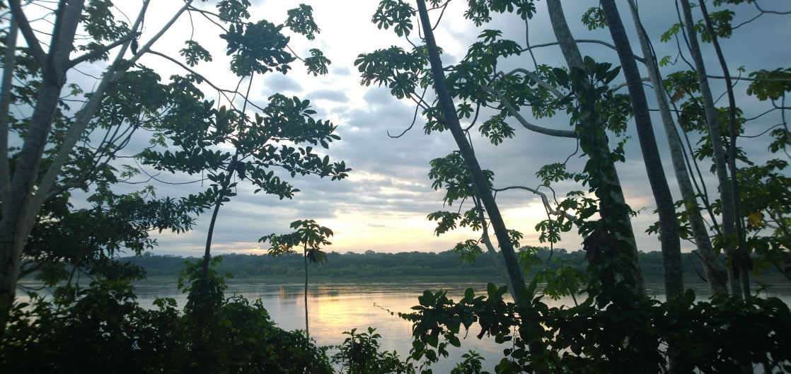 The banks of the Madre de Dios river at Inkaterra Reserva Amazonica lodge, Peru ( inkaterra.com ) Photo: Laura Ivill