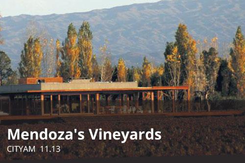 Mendoza's Vineyards | CityAM
