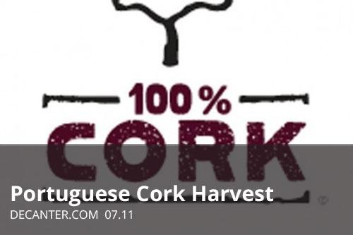 Portuguese Cork Harvest | Decanter.com