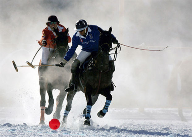 World Cup Polo on Snow