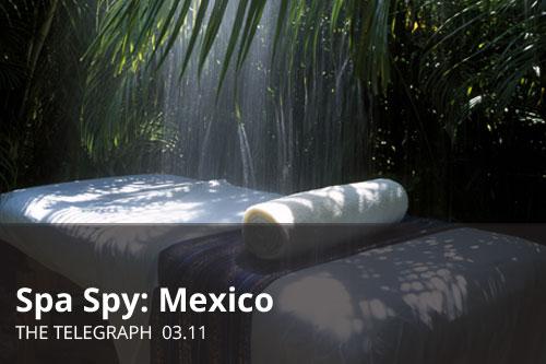 SpaSpyMexico_Thumb2.jpg