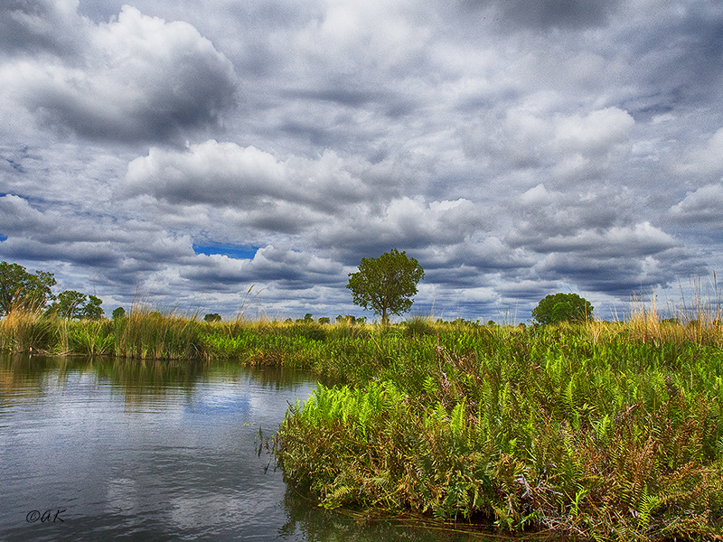 Okanvango