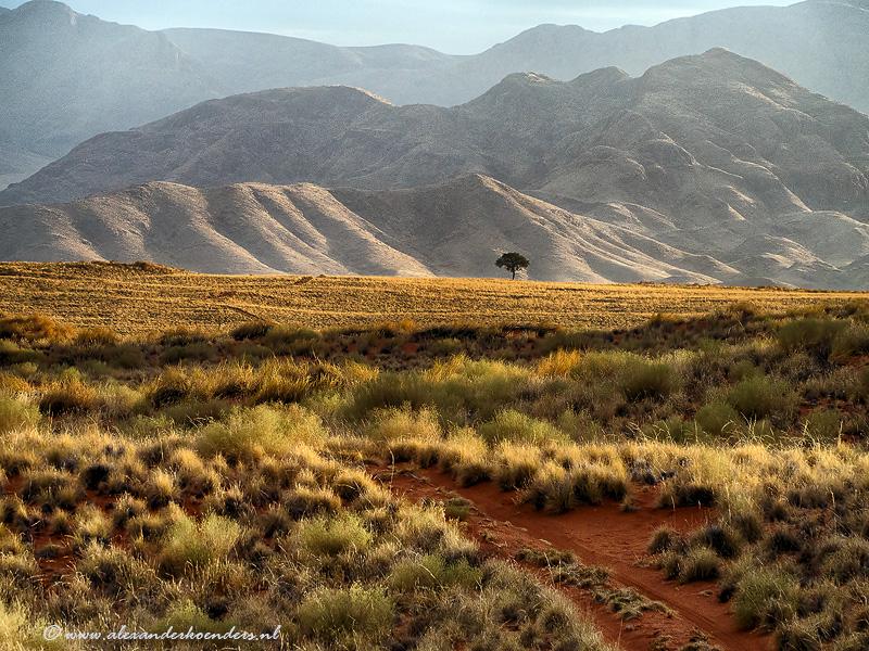 Namibrand national park