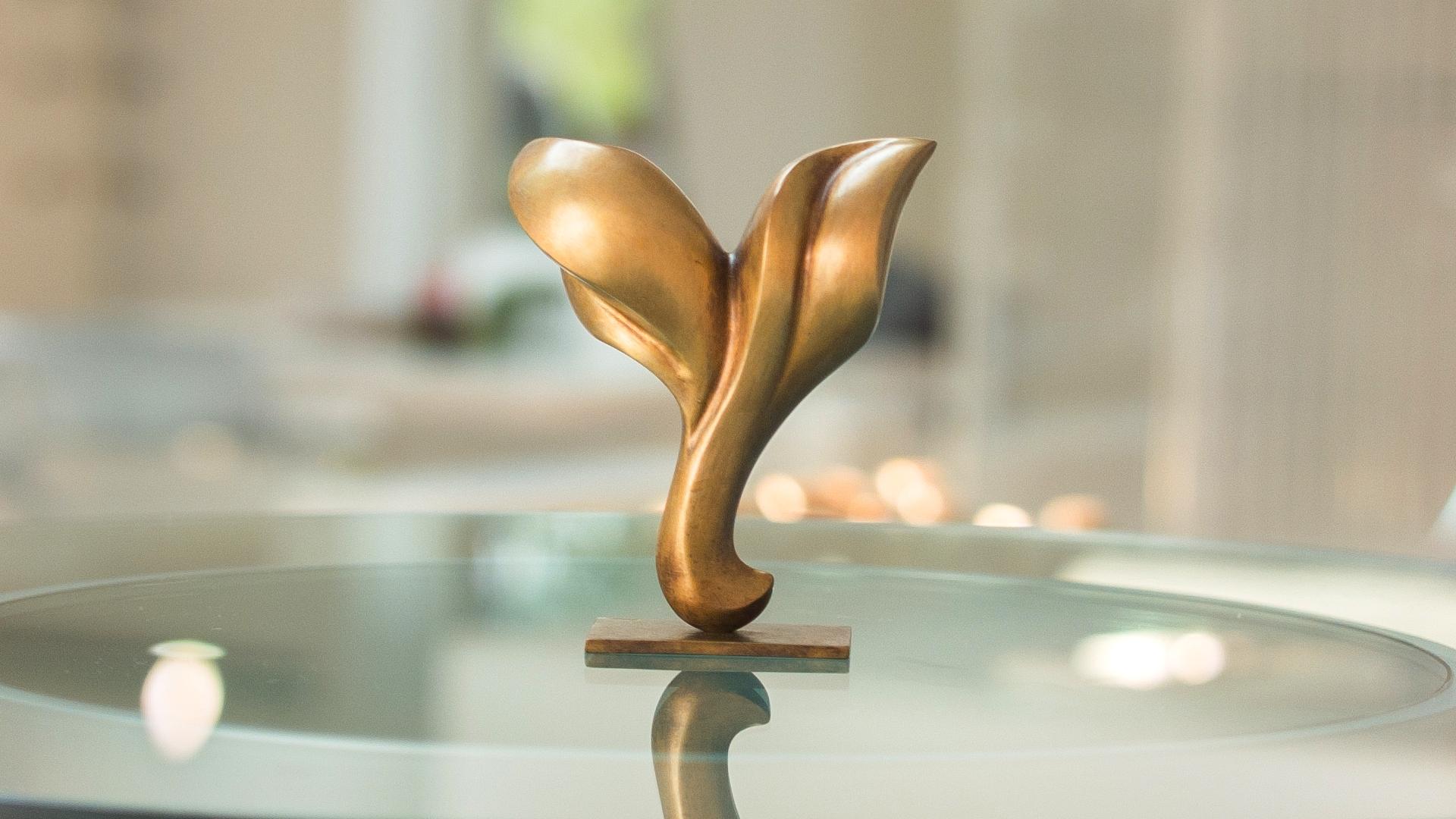 VISION Lattoflex 2014 Bronze 16 x 13 x 5 cm