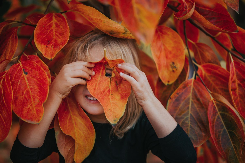 Child-Photographer-at-Raeburn-Orchards.jpg