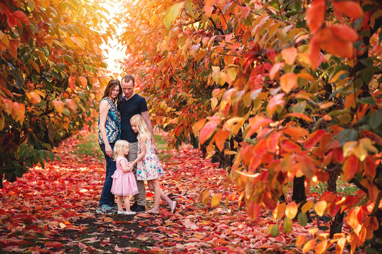 Family-Art-at-Raeburn-Orchards.jpg