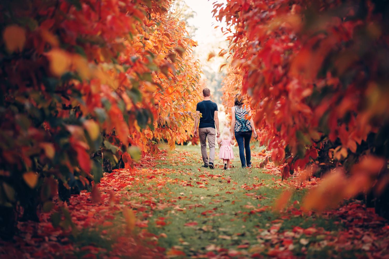 Autumn-at-Raeburn-Orchards.jpg