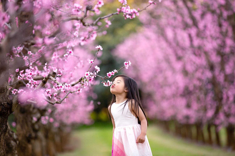 Kiss-a-blossom.jpg