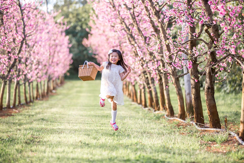 Skipping-through-the-blossoms.jpg