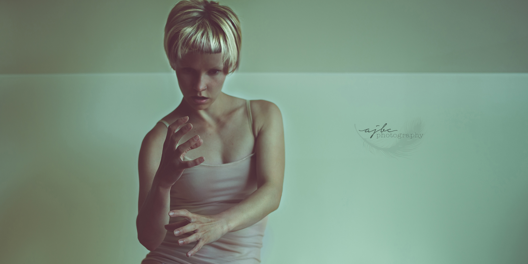 Sia Chandelier Art Port Huron Photographer studio.png