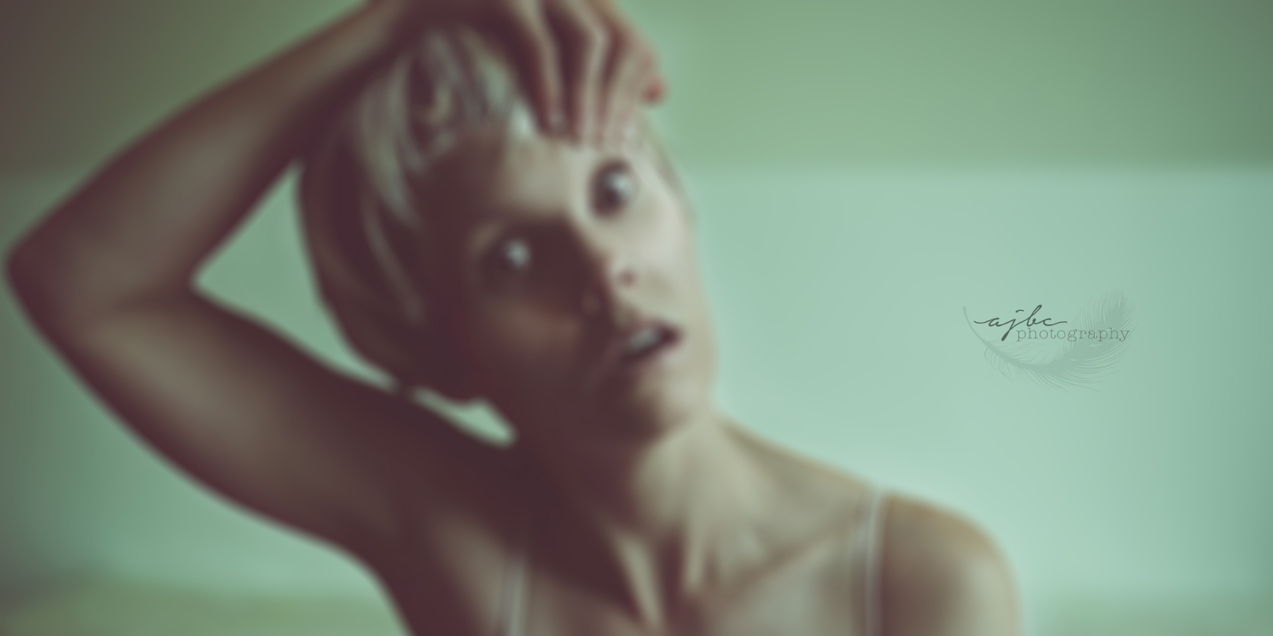 Sia Chandelier Art Detroit Photographer studio.png