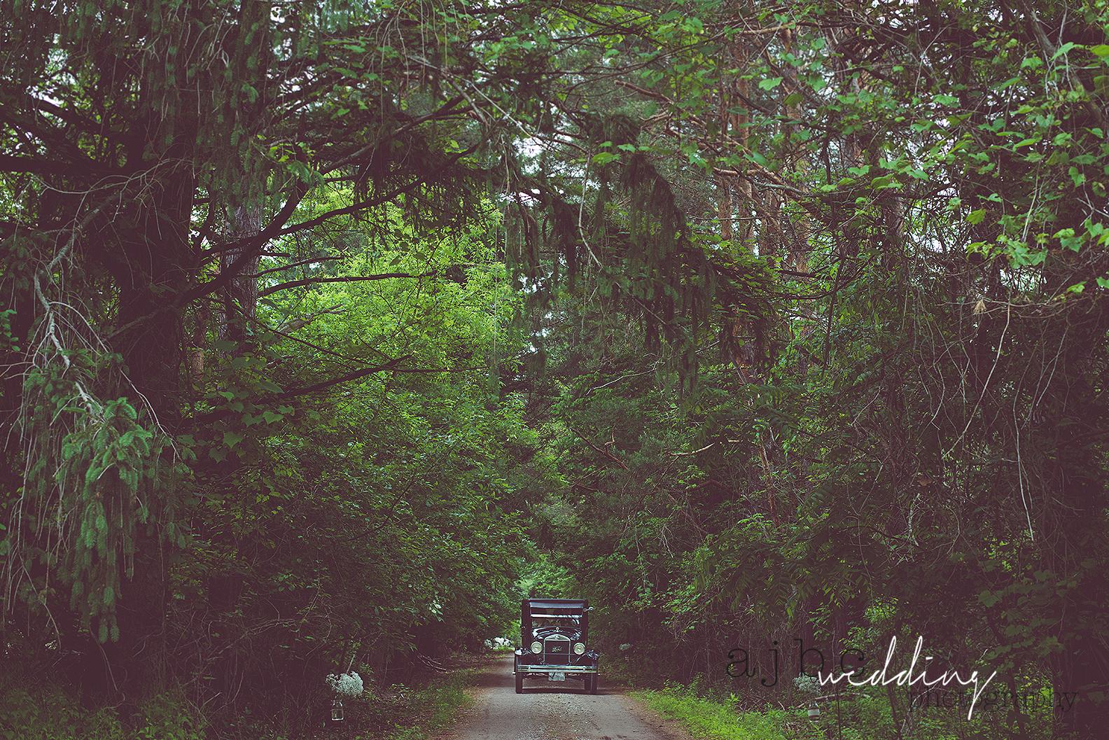 ajbcphotography-port-huron-michigan-wedding-photographer-outdoors-summer-wedding-country-wedding-wadhams-michigan-bride-vintage-wedding8.jpg