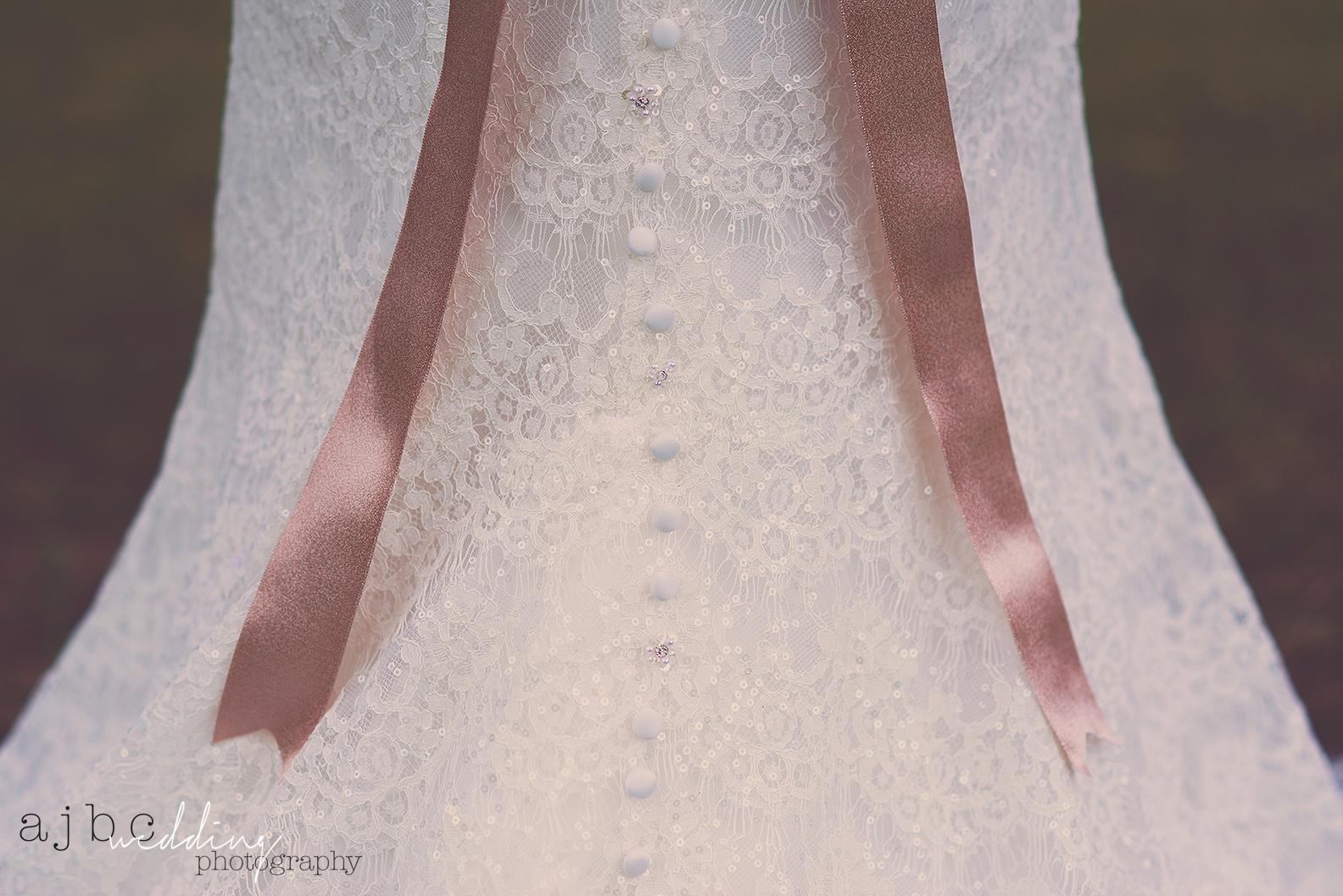 crystals ajbcphotography-port-huron-michigan-wedding-photographer-outdoors-summer-wedding-country-wedding-wadhams-michigan-bride-vintage-wedding-dress-shots-getting-ready.jpg