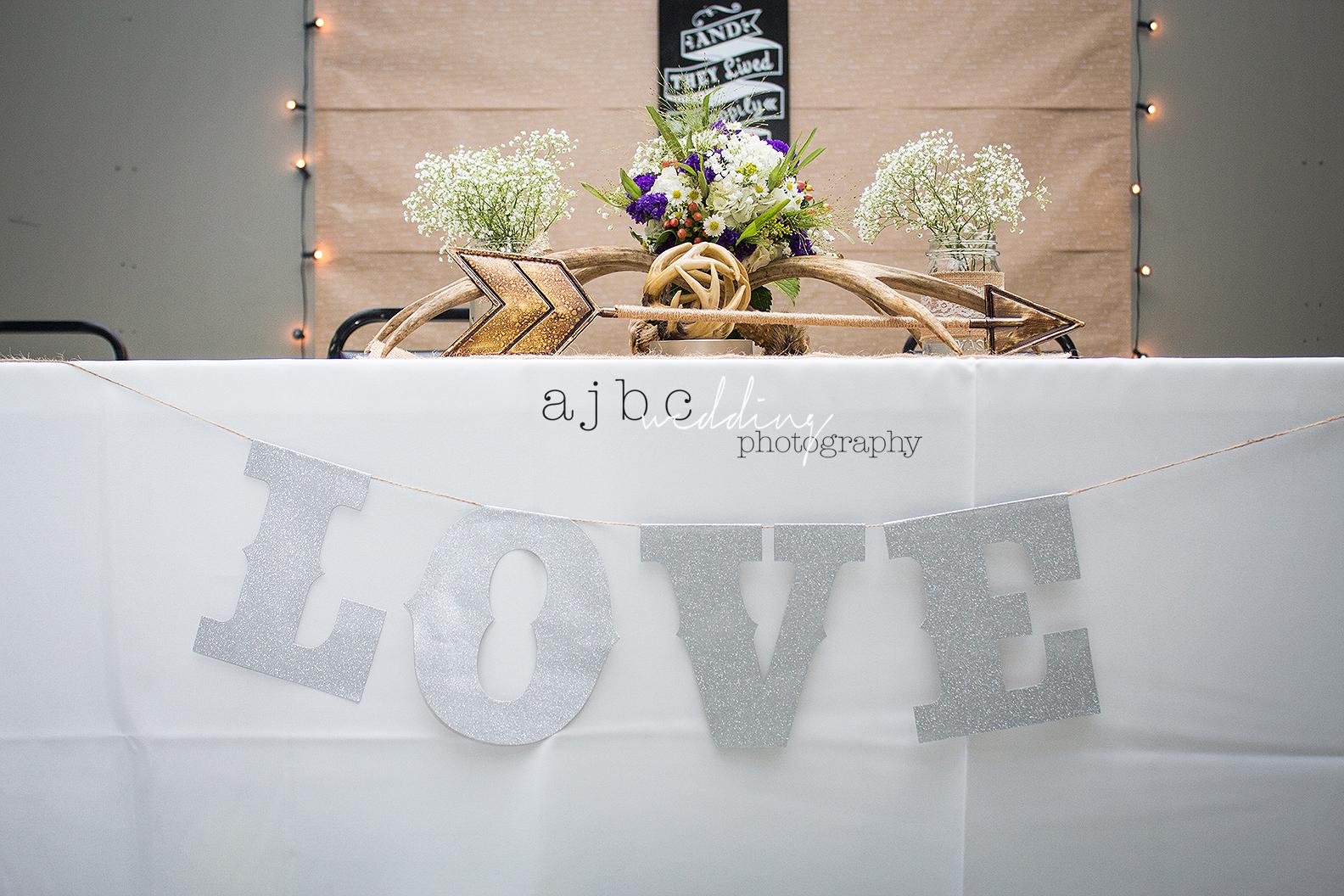 ajbcphotography-port-huron-michigan-wedding-photographer-outdoors-summer-wedding-country-wedding-wadhams-michigan-bride-vintage-wedding1.jpg