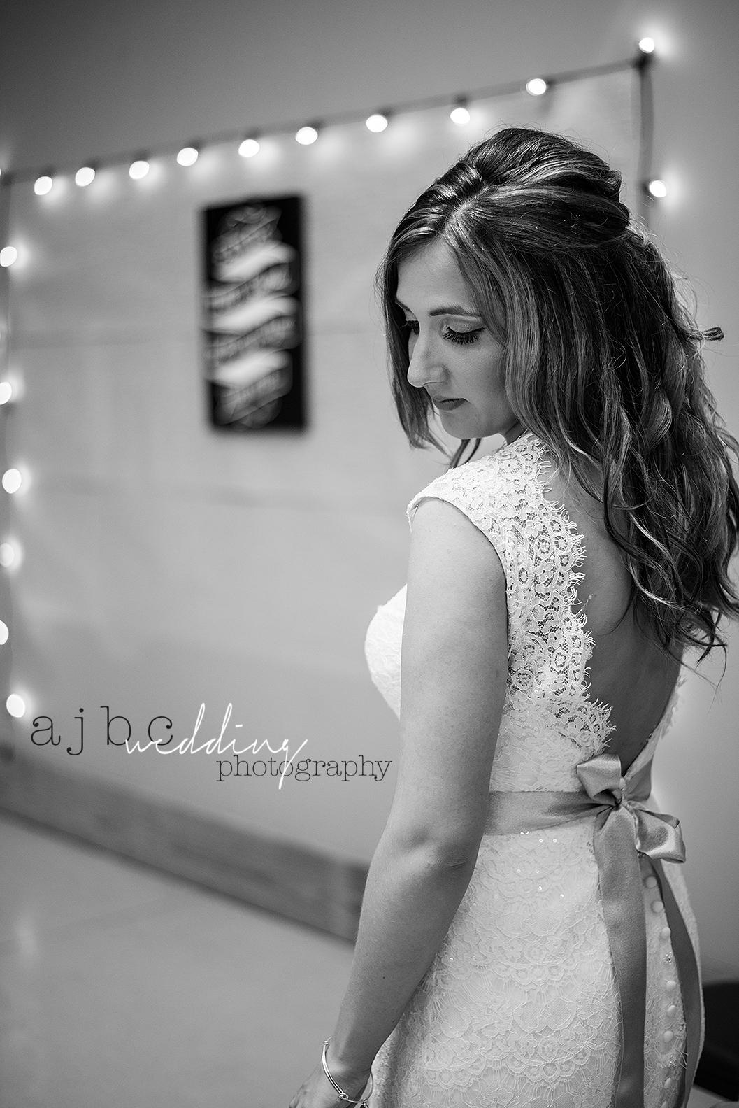 ajbcphotography-port-huron-michigan-wedding-photographer-outdoors-summer-wedding-country-wedding-wadhams-michigan-bride-vintage-wedding3.jpg