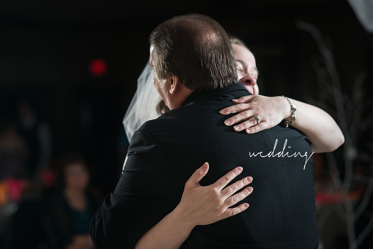ajbcphotography-port-huron-michigan-wedding-photographer-love-bride-groom-family-michigan-wedding-photographer-father-daughter-dance.jpg