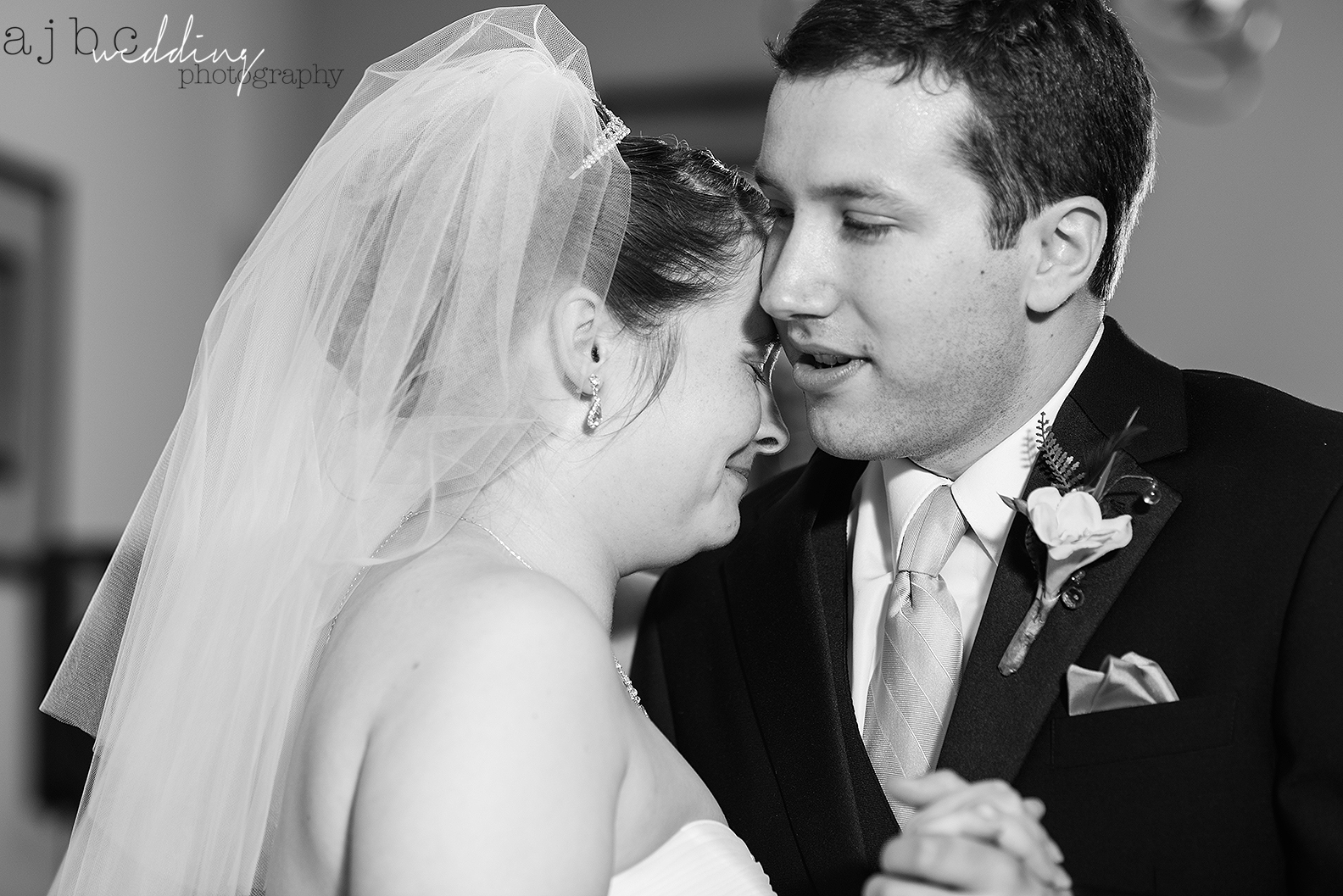 ajbcphotography-port-huron-michigan-wedding-photographer-love-bride-groom-family-michigan-wedding-photographer-first-dance.jpg
