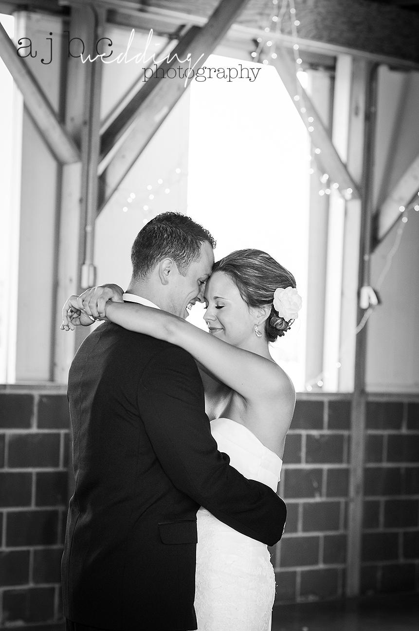ajbcphotography-port-huron-michigan-summer-wedding-photographer.jpg