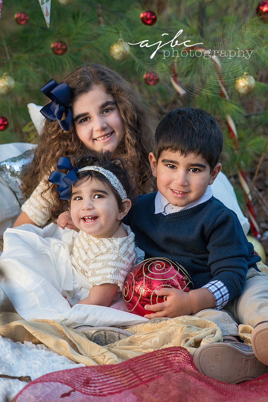 port-huron-michigan-outdoor-family-photography2.jpg
