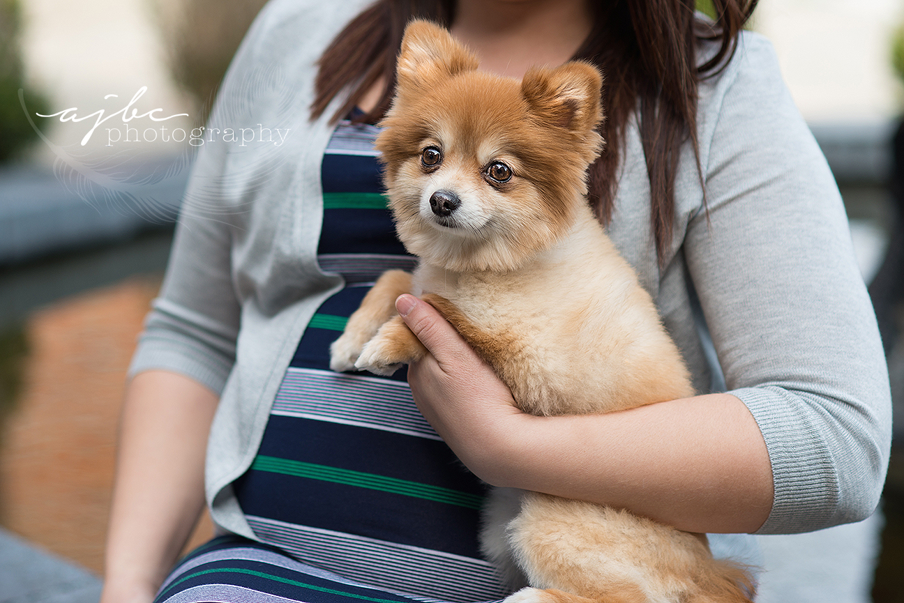 family and dog photoshoot.jpg