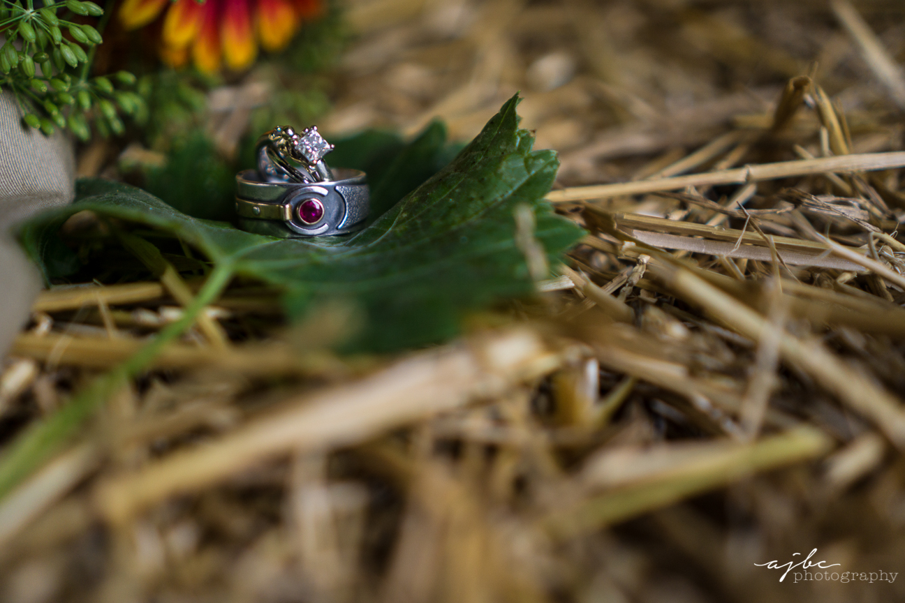 detail ring shots michigan wedding photographer.jpg