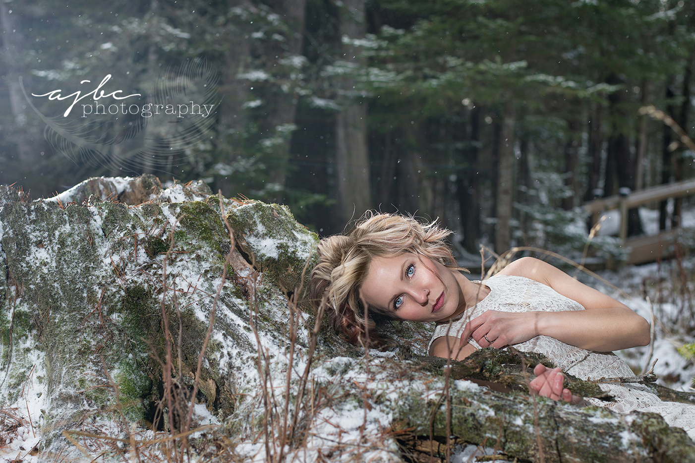 grayling michigan outdoor photoshoot fine art editing winter photoshoot snow beauty photography.jpg