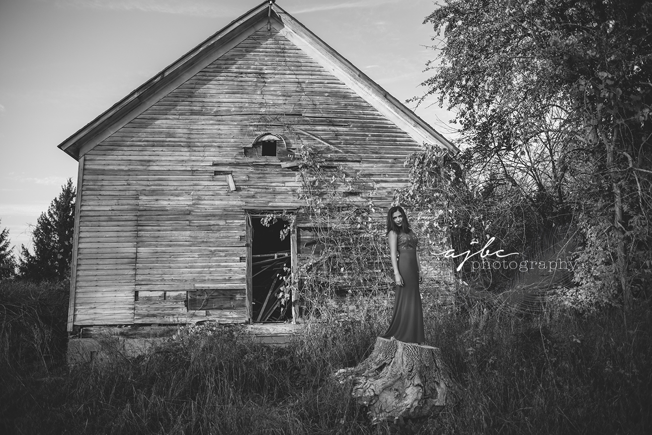 marine city senior photographer cardinal mooney high school senior photoshoot old holywood glam red dress red lips senior fashion senior shoot in field senior pictures in the fall abandoned barn high fashion.jpg