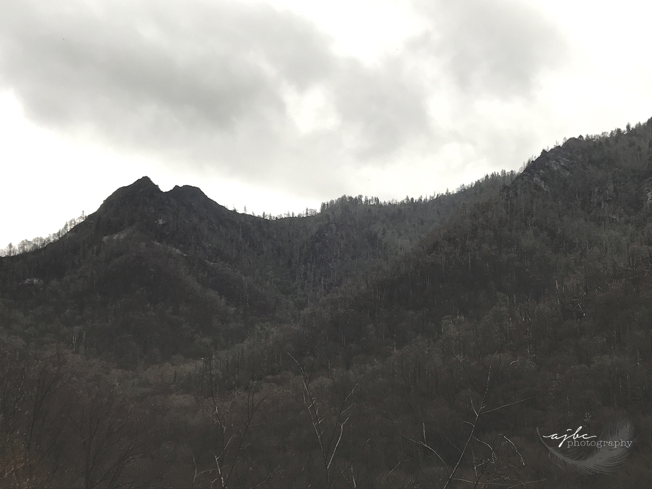 great smokey mountains the smokies photography.jpg