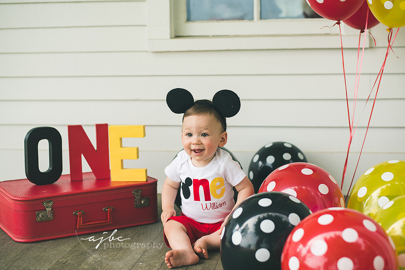 michigan child portrait photographer mickey mouse themed birthday.jpg