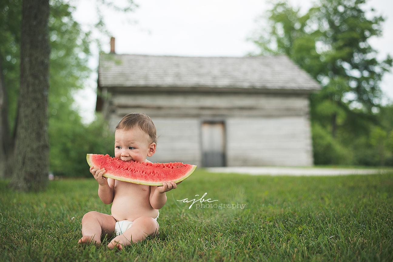 1 year photoshoot with watermelon michigan child photographer.jpg